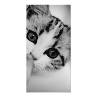 cat photo card template
