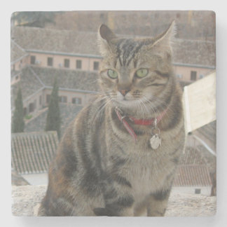 Cat Photo Marble Stone Coaster