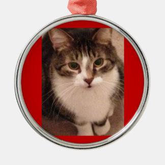 Cat Photo Metal Ornament
