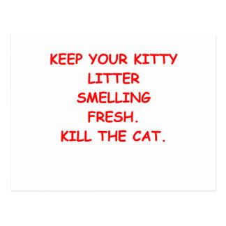 CAT.png Postcard