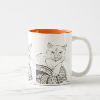 Cat Ragdoll Portrait Mug