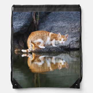 Cat Reflection in Pond Water Photo - bag