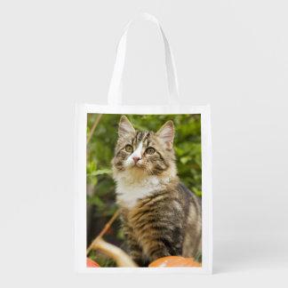 Cat Reusable Grocery Bag