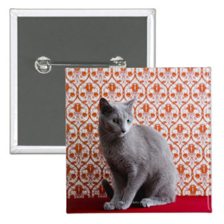 Cat (Russian blue) and wallpaper background 2 Inch Square Button
