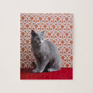 Cat (Russian blue) and wallpaper background Puzzle