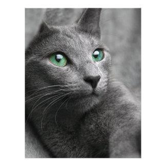 Cat Russian Blue Look Eyes Gray Pet Letterhead