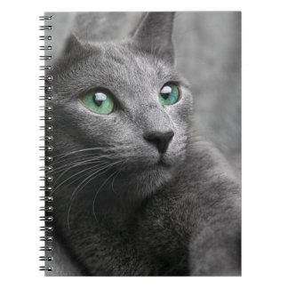 Cat Russian Blue Look Eyes Gray Pet Notebook