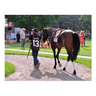 Cat s Claw wins the Waya Stakes Post Cards