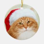 Cat Santa Claus Ornament