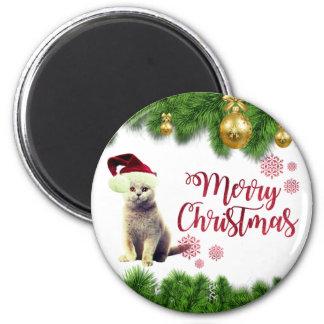 Cat,Santa Hat,Christmas Balls Magnet