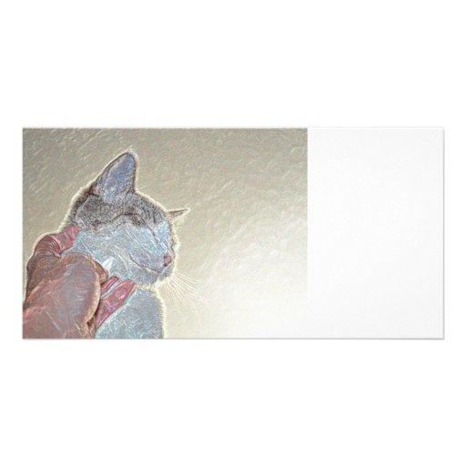 cat scratch under neck sparkle animal feline pet photo card