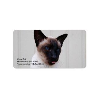 Cat Siamese Portrait Label