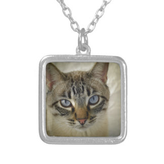 cat silver plated necklace