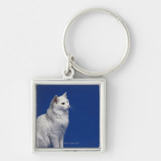 Cat sitting against blue background Silver-Colored square keychain