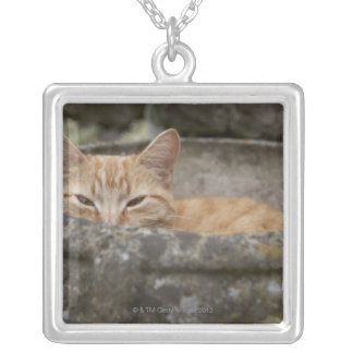 Cat sitting inside urn silver plated necklace