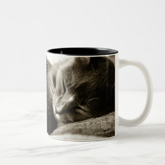 Cat sleeping on sofa (B&W sepia tone) Two-Tone Coffee Mug