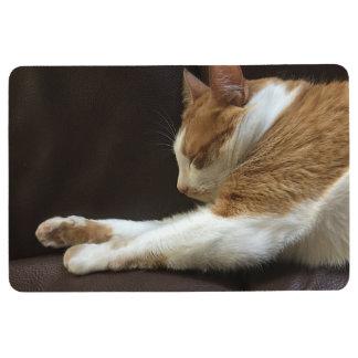 Cat sleeping on sofa floor mat