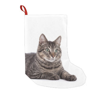 Cat Small Christmas Stocking