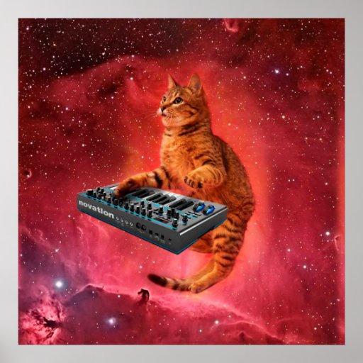cat sounds - cat - funny cats - cat memes poster