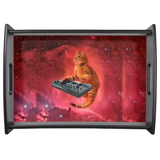 cat sounds - cat - funny cats - cat memes serving platter