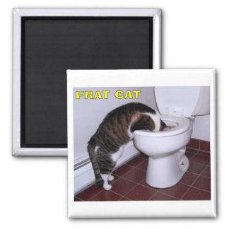 Cat Square Magnet