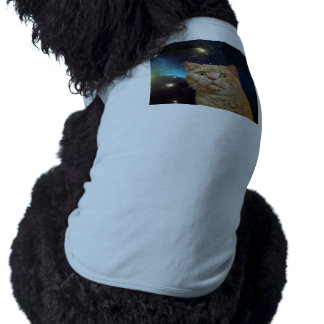 Cat staring at the universe dog clothes