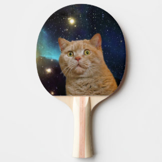 Cat staring at the universe ping pong paddle