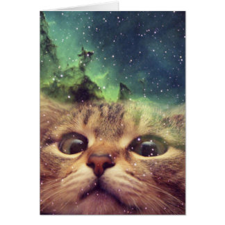 Cat Staring into Space Card