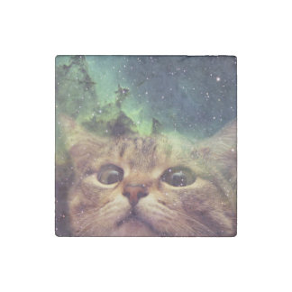 Cat Staring into Space Stone Magnets