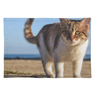 Cat Stray Animal Cute Young Face Eyes Beach Placemat