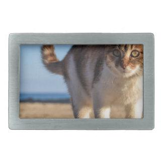 Cat Stray Animal Cute Young Face Eyes Beach Rectangular Belt Buckle