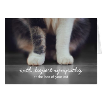 Cat Sympathy Bereavement Greeting Card