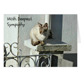 Cat Sympathy Card with Grey and White Cat