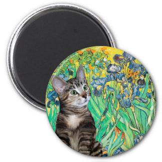 Cat (Tabby 2) - Irises 2 Inch Round Magnet