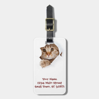 Cat tearing paper - looking cat - cute cats - pet luggage tag
