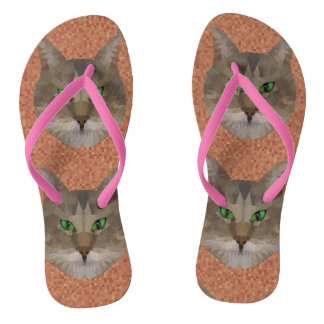 Cat Triangles Picture, Flip Flops