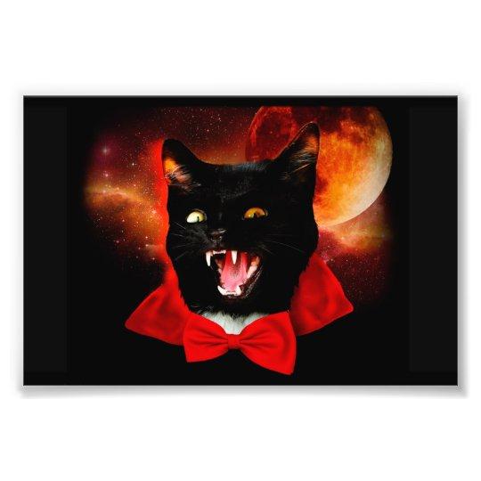 cat vampire - black cat - funny cats photo print