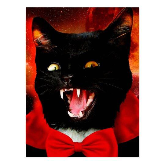 cat vampire - black cat - funny cats postcard
