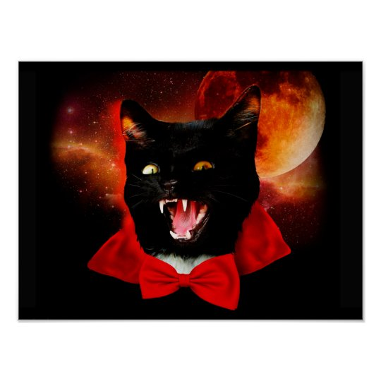 cat vampire - black cat - funny cats poster