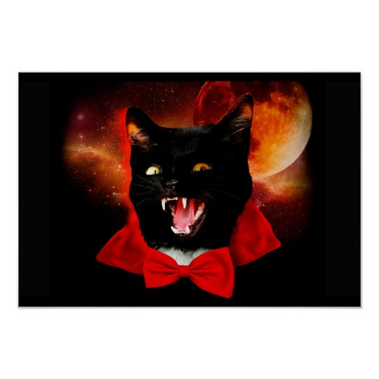 cat vampire - black cat - funny cats poster