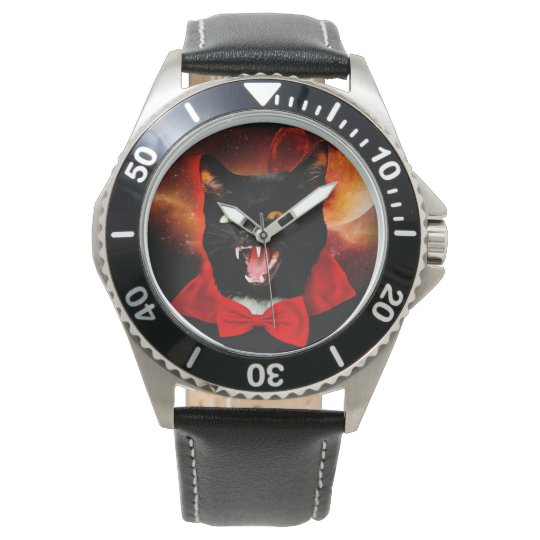 cat vampire - black cat - funny cats watch