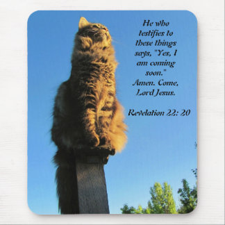 Cat, waiting for Jesus Revelation 22:20 Mouse Pad