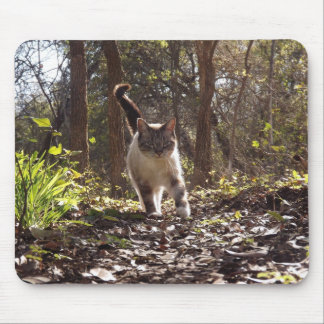 Cat Walking in forest mouspad Mouse Pad
