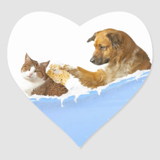 Cat Wash Heart Sticker