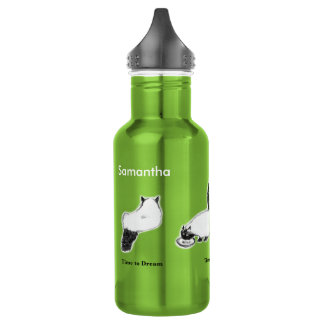 Cat Water Bottle, Green—Time to Rest, Eat, Dream 532 Ml Water Bottle