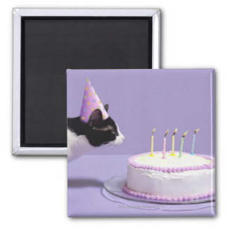 Cat wearing birthday hat blowing out candles on square magnet