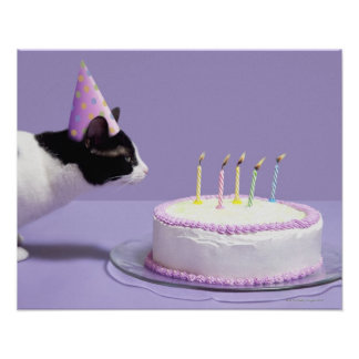 Cat wearing birthday hat blowing out candles poster