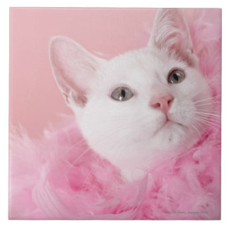 Cat wearing feather boa tile