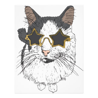 Cat Wearing Star Glasses Letterhead