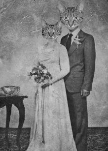 Vintage cat anniversary gifts on zazzle ca cat wedding junglespirit Images